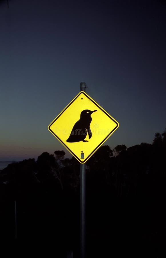 Download Sinal do pinguim imagem de stock. Imagem de estrada, azul - 10063479