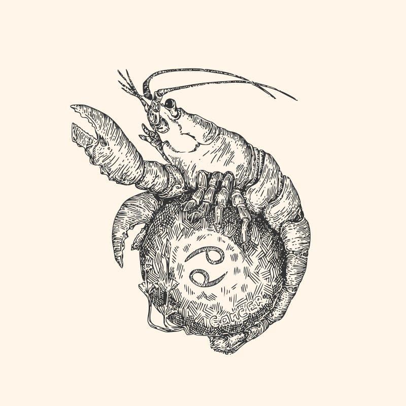 Sinal do vintage do zodíaco cancer ilustração royalty free