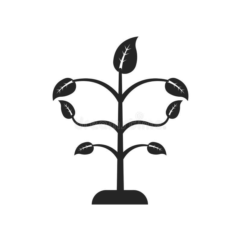Sinal e símbolo crescentes do vetor do ícone da árvore isolados no backg branco ilustração royalty free