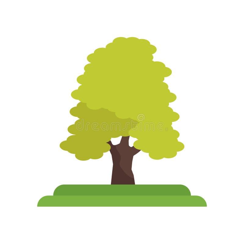 Sinal e símbolo do vetor do ícone da árvore dos Mel-locustídeo isolados no branco ilustração do vetor