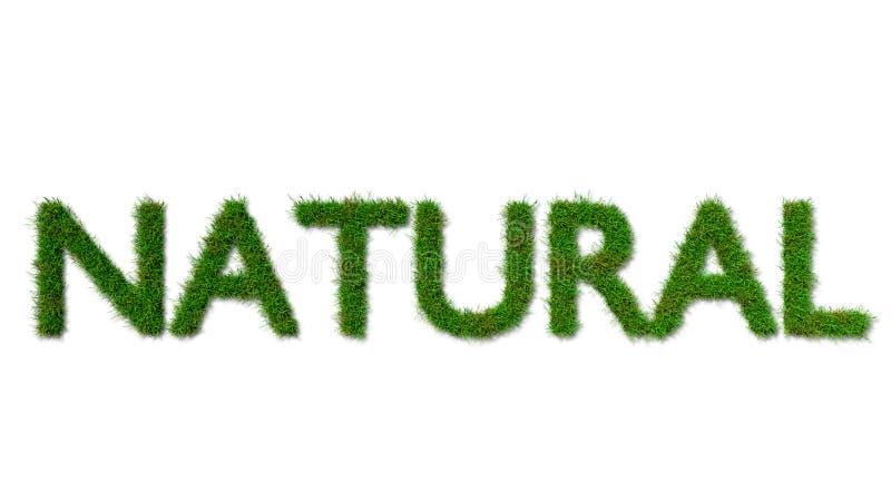 Sinal inglês da NATUREZA feito da grama verde no fundo branco ilustração royalty free