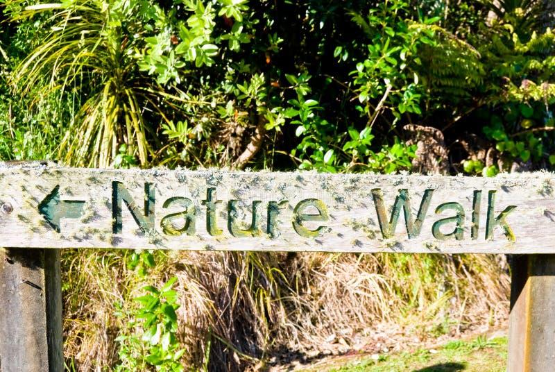 Sinal textured de madeira: Caminhada da natureza imagens de stock