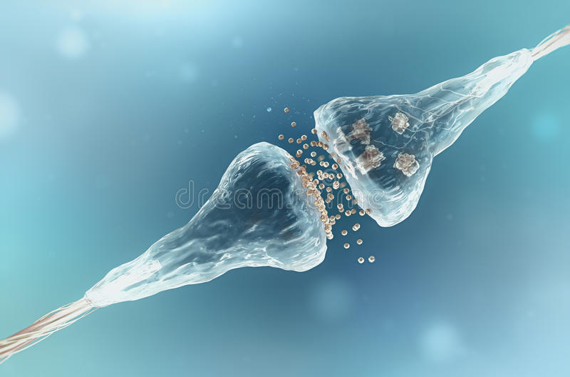 Sinapse e neurônio fotografia de stock