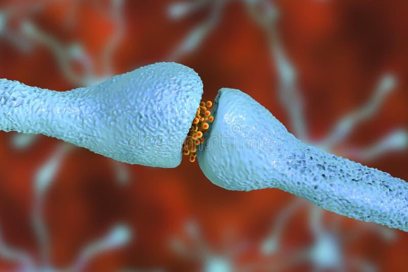 Sinapsi di un neurone, cellule cerebrali royalty illustrazione gratis