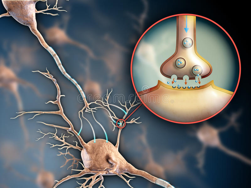 Sinapsis de la neurona stock de ilustración