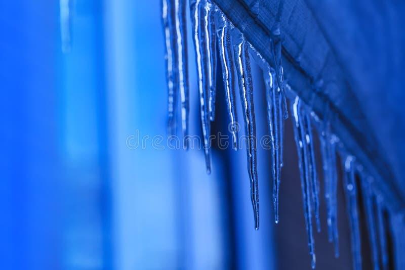 Sincelo de suspensão durante o tempo de mola Sincelos de derretimento com textura de cristal no fundo do inverno A água deixa cai foto de stock
