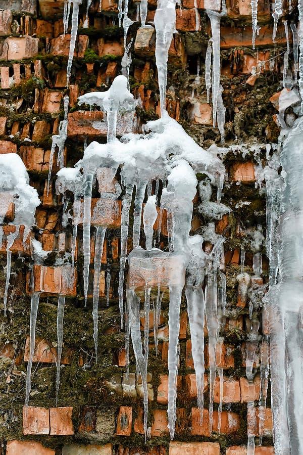 Sincelos, acúmulo de gelo no fundo de uma parede de tijolo, no fundo velho abstrato da parede de tijolo do close up com gelo da q imagens de stock