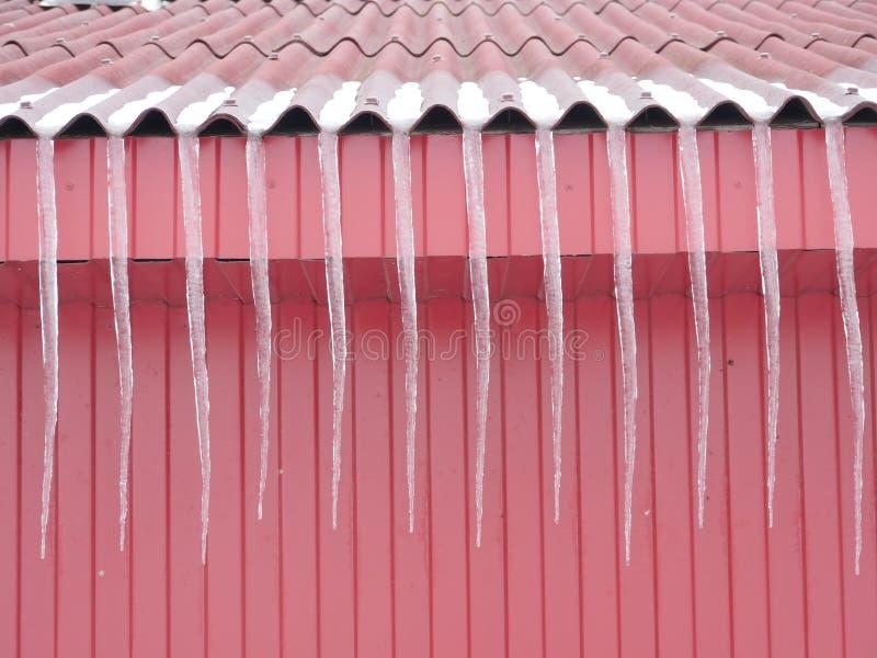 Sincelos longos no telhado vermelho imagem de stock royalty free