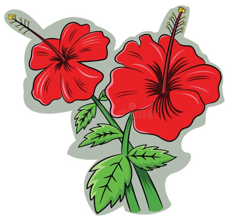 Sinensis de rosa del hibisco stock de ilustración