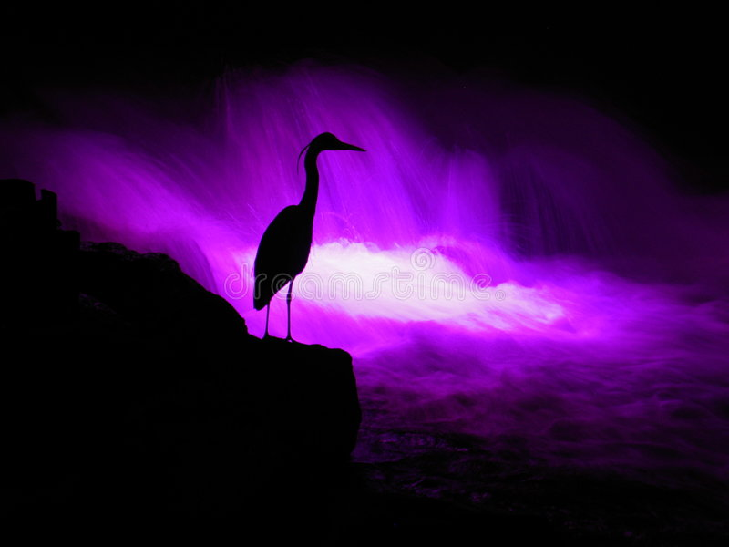 Sinfonia di tramonto fotografie stock