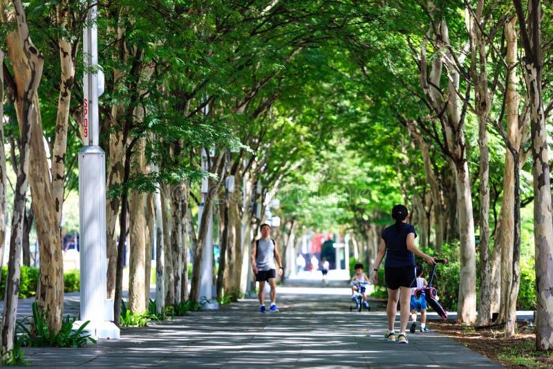 Singapore-13 APR 2019: ludzie uwalniają odprowadzenie na greenery bulwarze zdjęcia royalty free