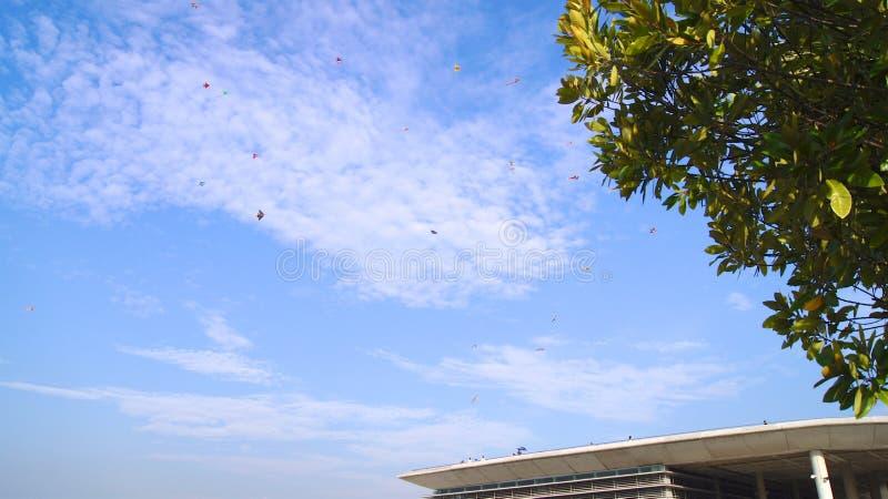 SINGAPORE - APRIL 3rd 2015: Drakeflyg på Marina Barrage Marina Barrage är vattenförsörjningstället av Singapore och är royaltyfri fotografi