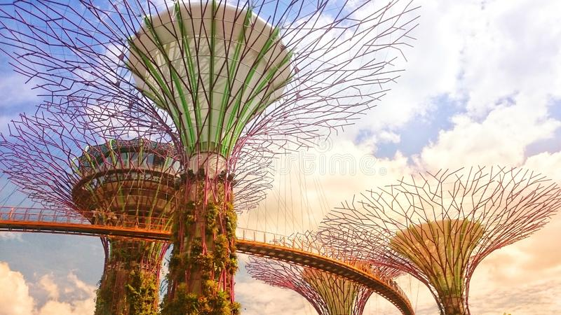 Singapore. Autumn 2018. Supertrees in gardens by the bay. Near Marina bay sands hotel. Bridge from tree to tree. Blue cloudy sky. stock images
