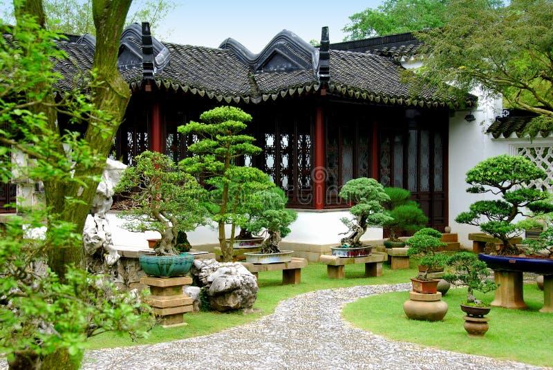Singapore bonsai al giardino cinese fotografia stock for Giardino cinese