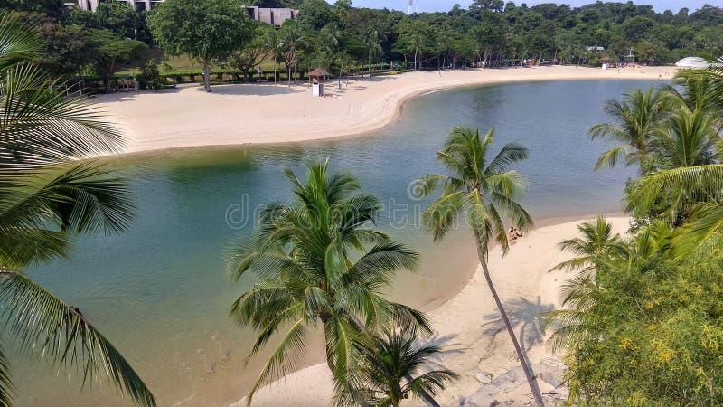 Singapore Singapore Botanic Gardens Lake. A lake at Singapoore, fresh air, nice place to swim and sunbathing stock images