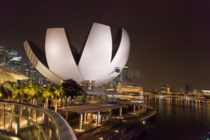 Singapore center at night royalty free stock photos