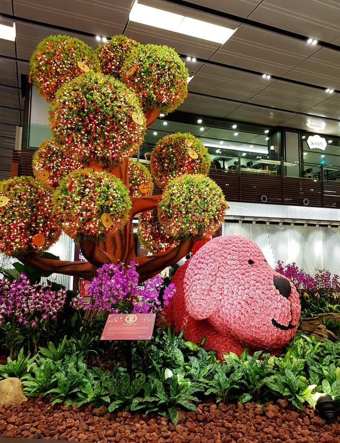 Singapore Changi Aiport inomhus blom- skärm royaltyfri bild