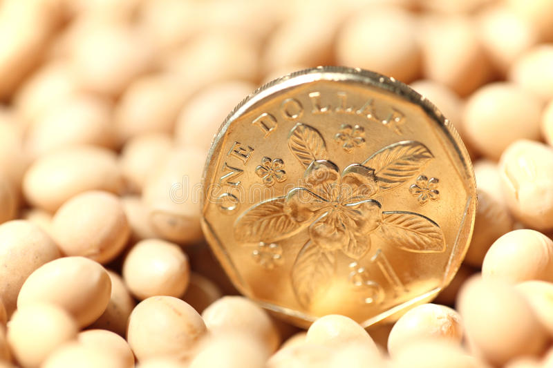 Singapore coin royalty free stock photography
