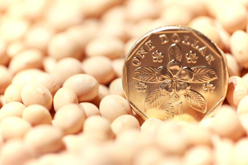 Singapore coin stock photo