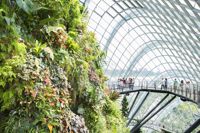 Singapore conservatories: Flower Dome and Cloud Forest. In the heart of Singapore in the gardens by the Bay are two huge glass domes, greenhouses — stock images
