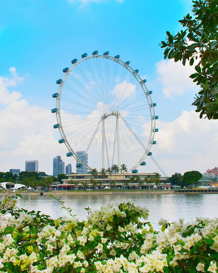 Beautiful Singapore Flyer. Singapore Flyer framed with trees and flowers on foreground stock photography