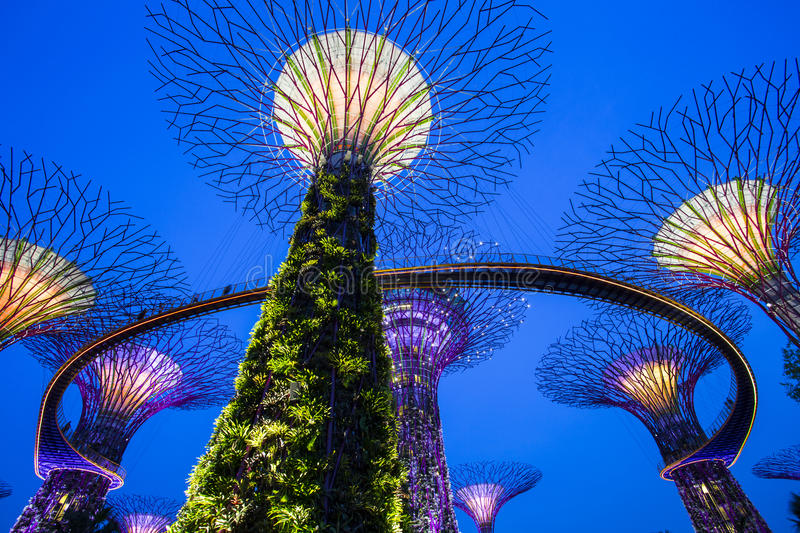 Singapore Garden by the bay stock images