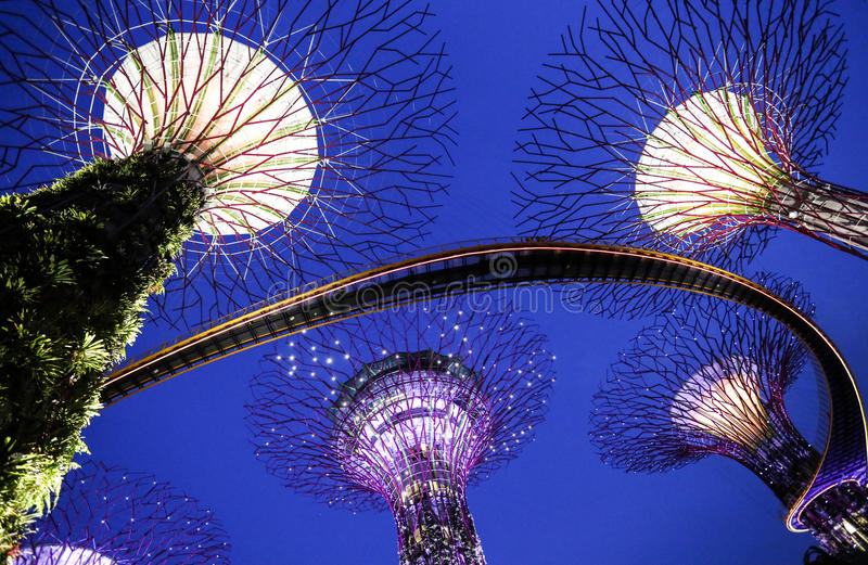 Singapore Garden by the bay royalty free stock photography