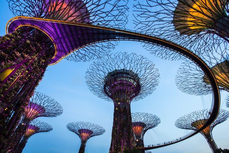 Singapore Garden by the bay royalty free stock photos