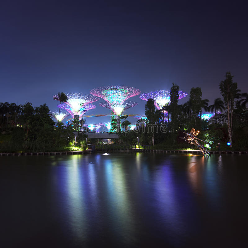 Singapore Garden by the Bay or Supertree Grove night view stock photography