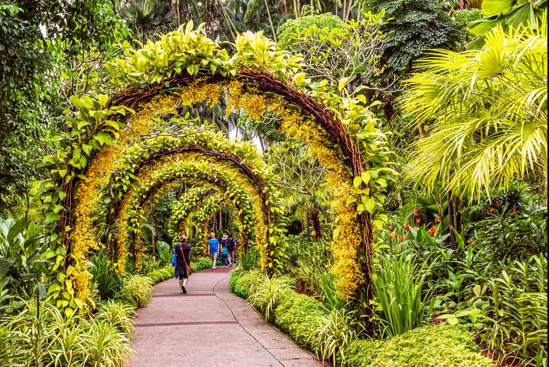 Pedestrian pathway arranged by small yellow orchid flowers place. Singapore Jan 11, 2018: Tourists walking on pedestrian pathway arranged by small yellow orchid stock photos
