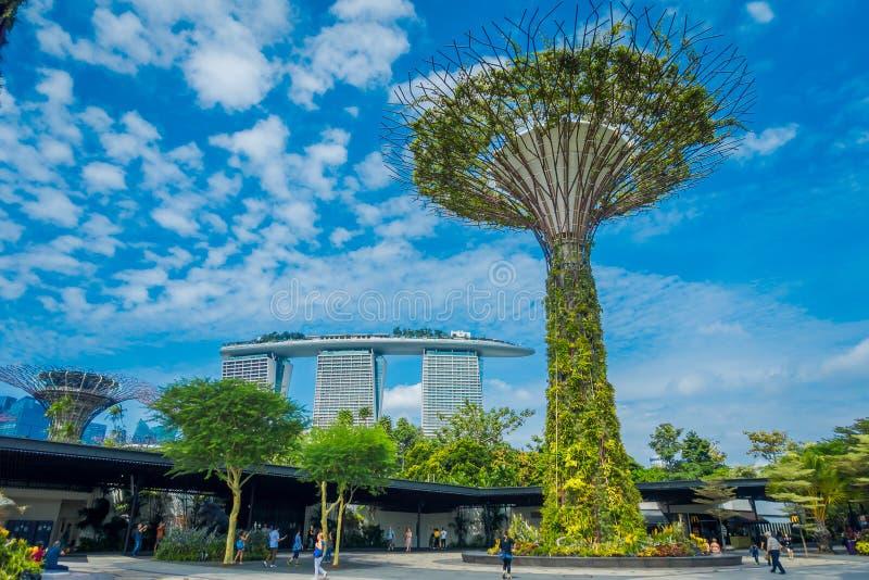 SINGAPORE, SINGAPORE - JANUARI 30, 2018: Niet geïdentificeerde mensen die onder een supertree met een Marina Bay-erachter gebouw  stock afbeeldingen
