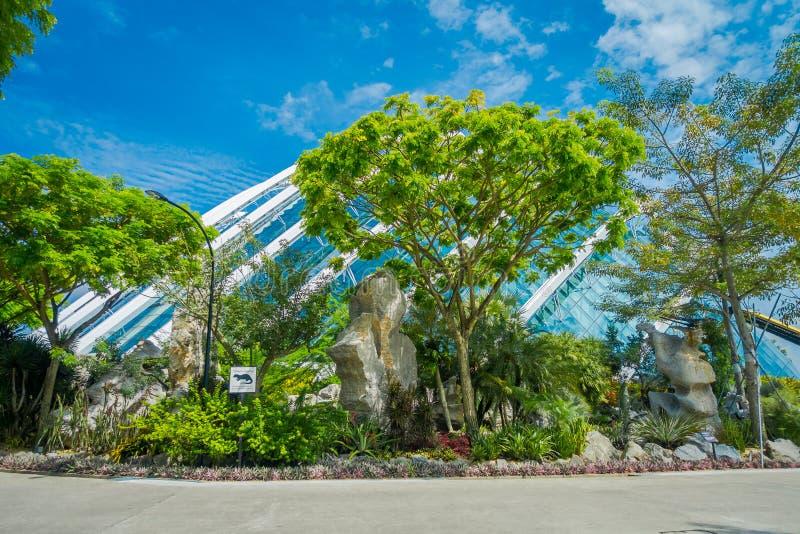 SINGAPORE, SINGAPORE - JANUARI 30, 2018: Openluchtmening van Wolk Forest Flower Dome bij Tuinen door de Baai in Singapore royalty-vrije stock fotografie