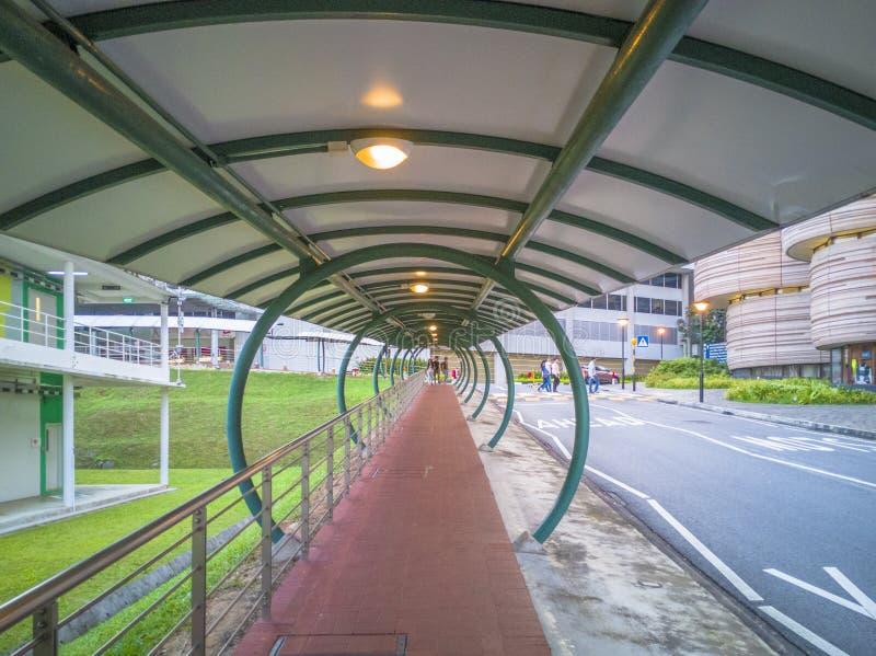 SINGAPORE-26 JANUARI 2017: Universitetsområdesikt i Nanyang teknologiska Univ royaltyfria bilder