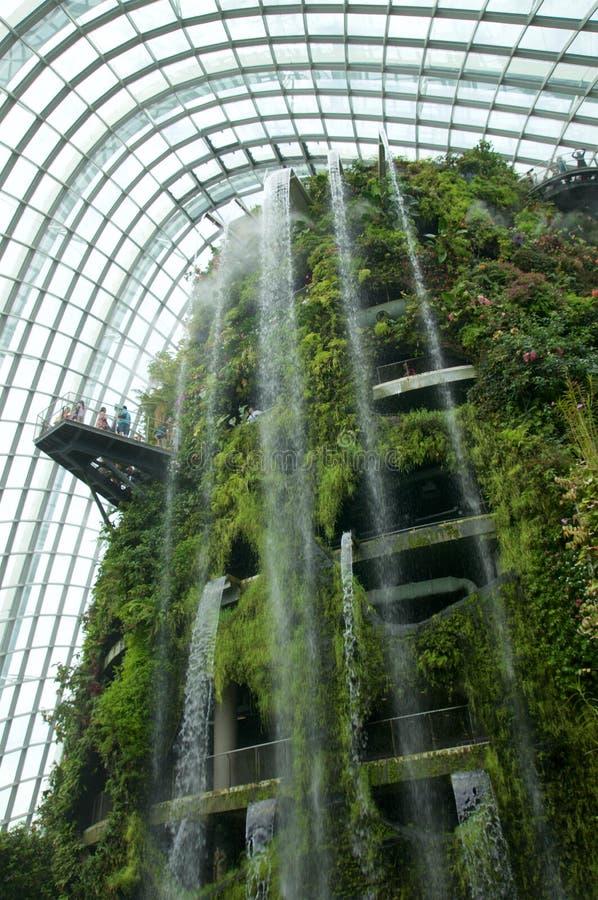 SINGAPORE - JULI 23rd, 2016: Inom av molnet Forest Dome - trädgård vid fjärden royaltyfri bild