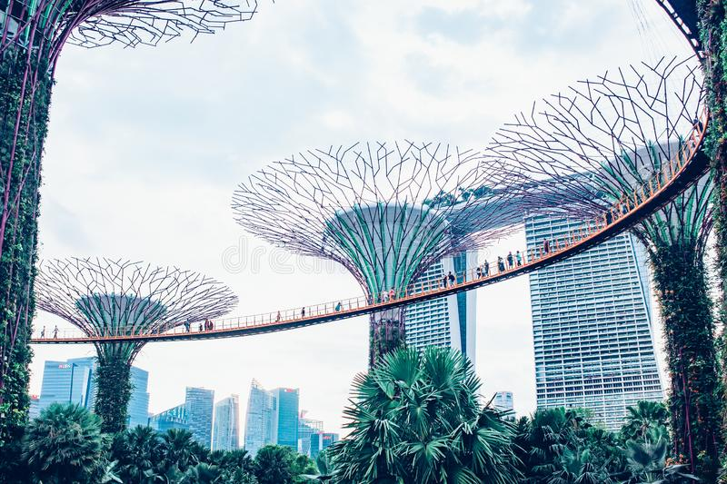 SINGAPORE, SINGAPORE - MAART 2019:Supertree Grove & OCBC Skyway at Garden by the Bay stock foto