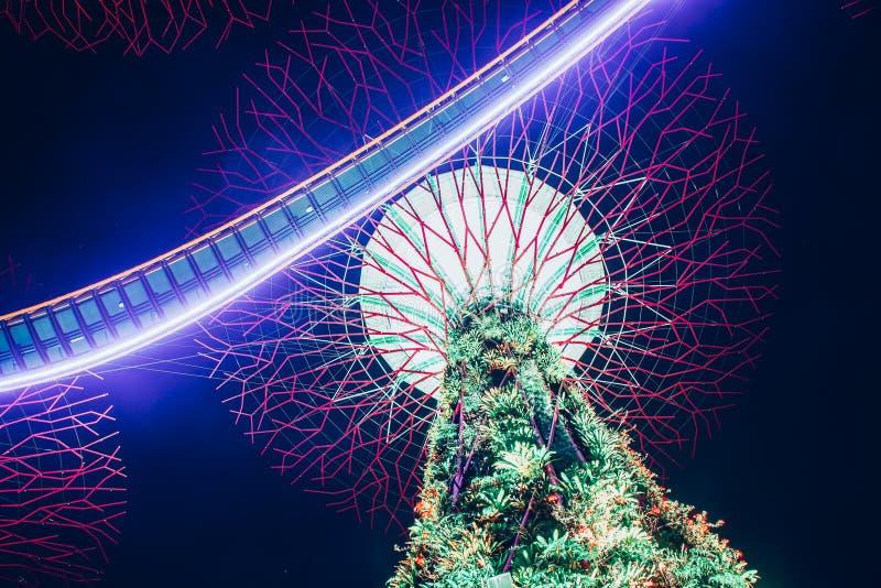 SINGAPORE, SINGAPORE - MAART 2019: Supertree Grove & OCBC Skyway verlicht voor lichtshow in tuinen door de baai royalty-vrije stock foto