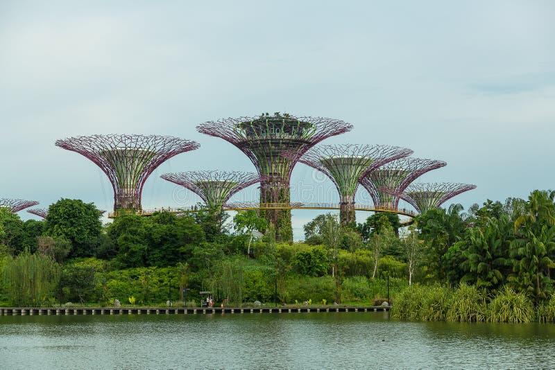 SINGAPORE - 12 MAGGIO: Giardini dalla baia il 12 marzo 2014 in Singap immagine stock