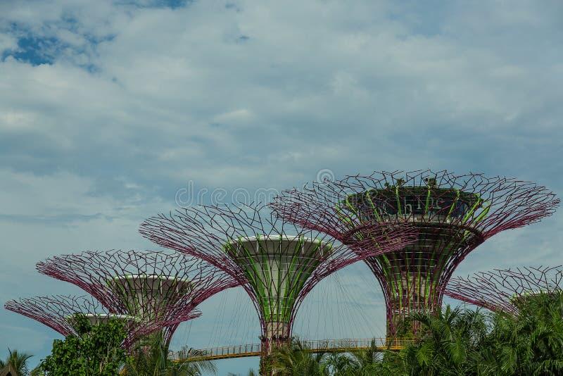 SINGAPORE - 12 MAGGIO: Giardini dalla baia il 12 marzo 2014 in Singap fotografie stock libere da diritti