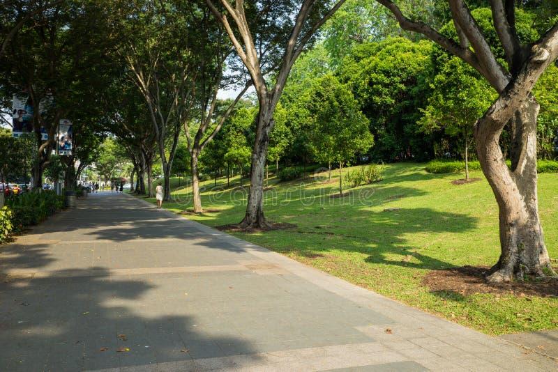 Singapore - Maj 1 2016: Den rena trottoaren och gräsplan parkerar längs fruktträdgården rd i Singapore arkivbild