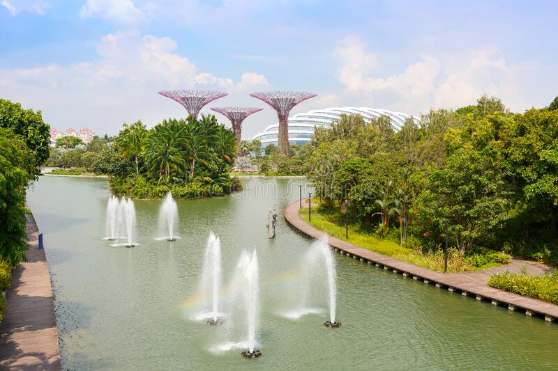 SINGAPORE-November 25, 2019:Fountains in Singapore`s Marina Bay Park and Supertree Grove in the Garden by the Bay.  stock photo