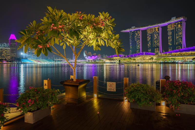 Singapore - october 14, 2018: tree in front of marina bay sands and singapore flyer at night. A single tree and flowers in front of marina bay sands and stock photography