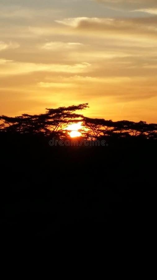 singapore słońca zdjęcie stock