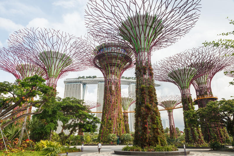 Singapore's Gardens by the Bay royalty free stock photo