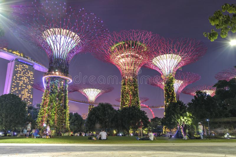 Singapore, September 29: Gardens by the Bay. Night view of the light tree show in Singapore. Gardens by the Bay. Night view of the light tree show in Singapore royalty free stock photo