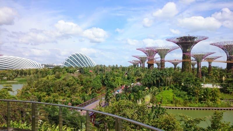 Singapore September 2018 Satellietbeeld van de botanische tuin en de brug, Tuinen door de Baai dichtbij het zand van de jachthave stock afbeeldingen