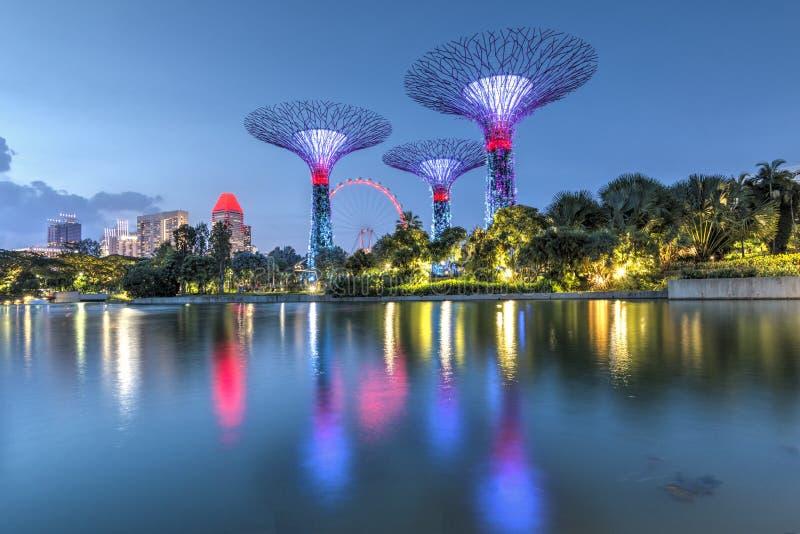 Singapore 29, September, 2018: Trädgårdar vid fjärden Nattsikt av den ljusa trädshowen i Singapore arkivfoton