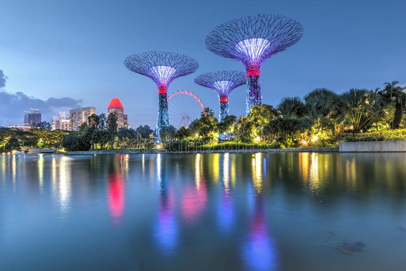 Singapore, 29, September, 2018: Tuinen door de Baai De nachtmening van de lichte boom toont in Singapore stock foto's