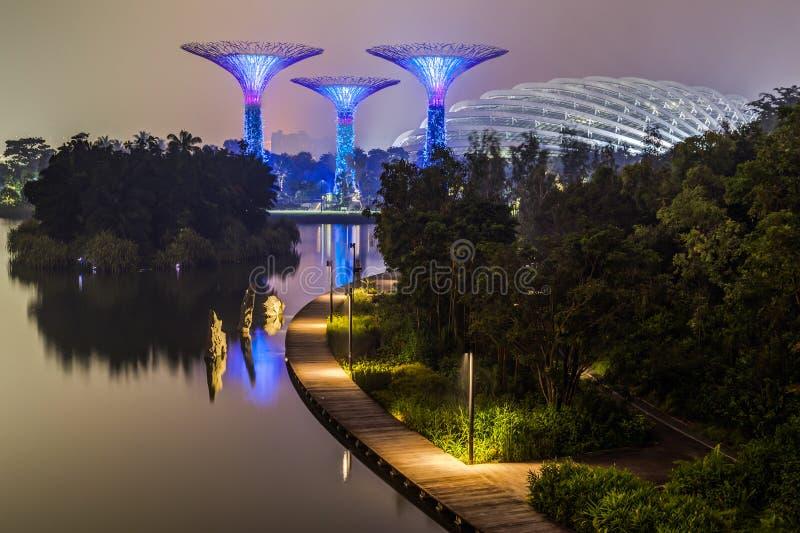 Singapore Singapore - circa September 2015: Supertree dunge och blommakupol i trädgårdar vid fjärden fotografering för bildbyråer