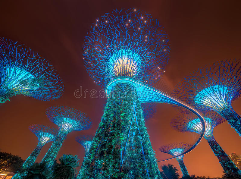 Download Singapore Skyline And View Of Marina Bay Stock Image - Image of lilies, evening: 89494617