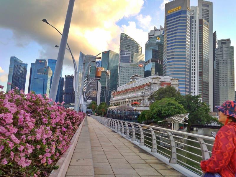 Singapore - tuinstad royalty-vrije stock afbeeldingen